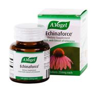 Echinaforce Protect 1140mg ,40tb